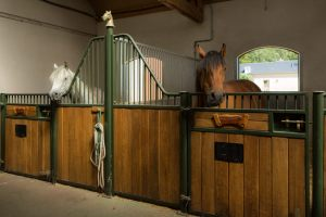 stable_9889-2